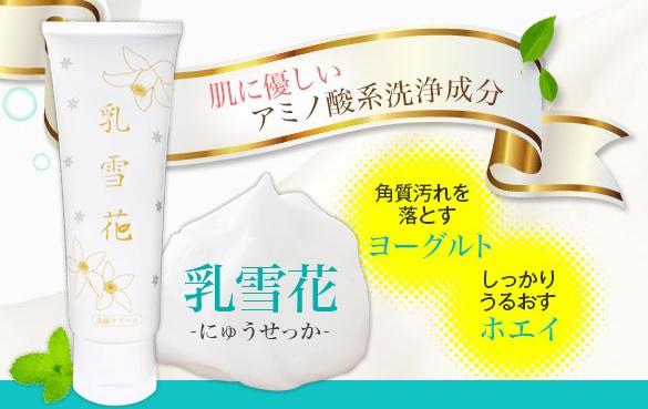 乳雪花(にゅうせっか)の成分