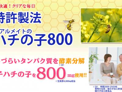 リアルメイトハチの子800