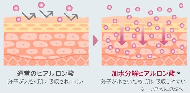 加水分解ヒアルロン酸