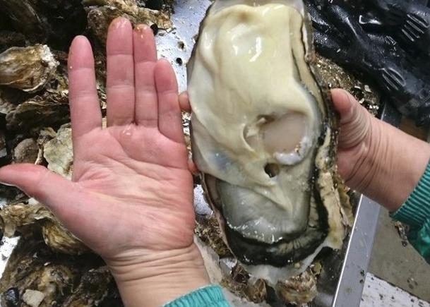 広島産の大牡蠣を贅沢に配合!
