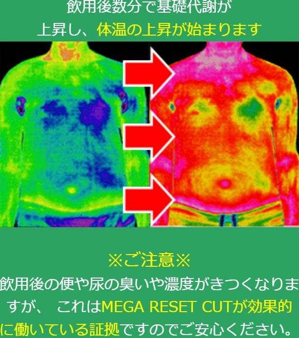 メガリセットカット飲用数分後で基礎代謝が上昇し体温が上昇する検証画像