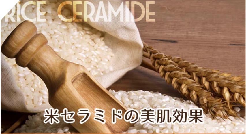 米セラミドの美肌効果