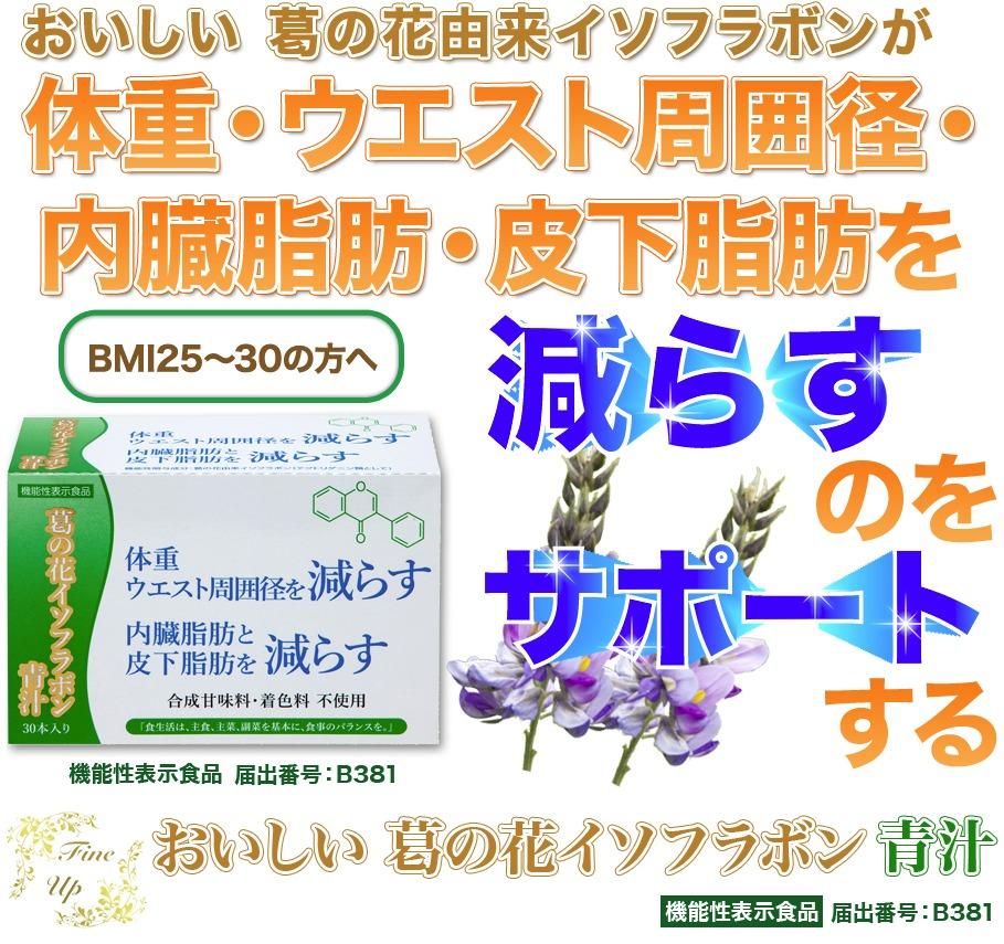 おいしい葛の花イソフラボン青汁