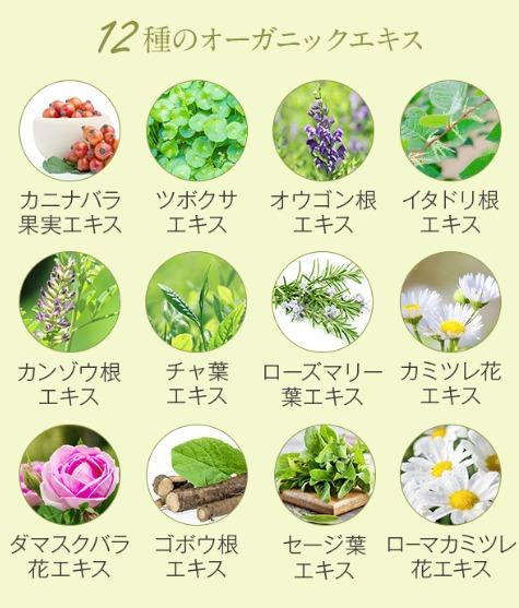 12種のオーガニックエキス