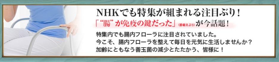 """NHKの「""""腸""""が免疫の鍵だった」という特集が話題に!"""