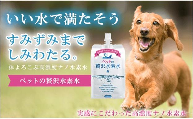 ペットの贅沢水素水とは
