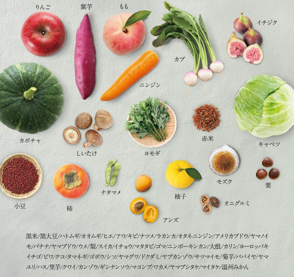 65種類の植物酵素配合!美肌菌をサポートしてうるおい肌へ