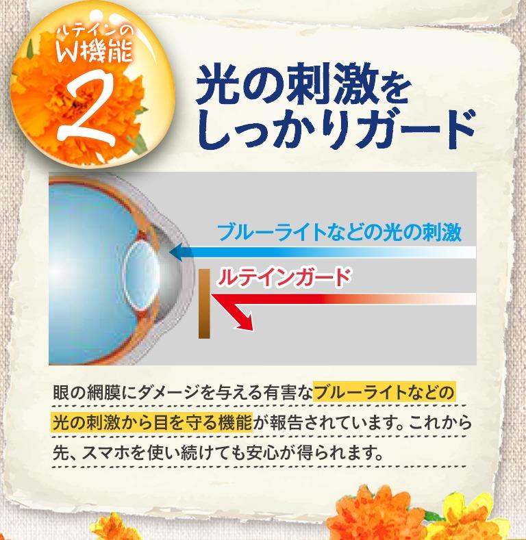 網膜へのダメージになるブルーライトなどの有害な光線をガード