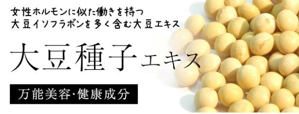 大豆種子エキス