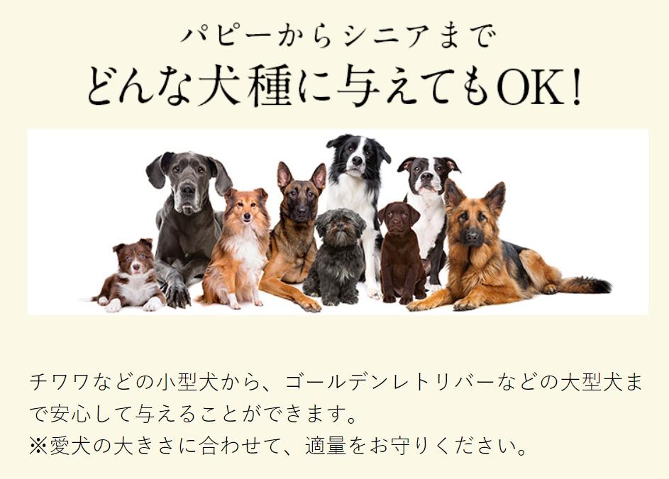 ジュレワンアイケアはどんな犬種でも食べられるの?
