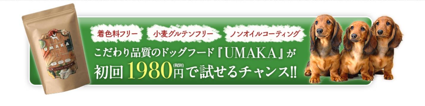 最新!UMAKA(美味華)ドッグフードの特別キャンペーン情報
