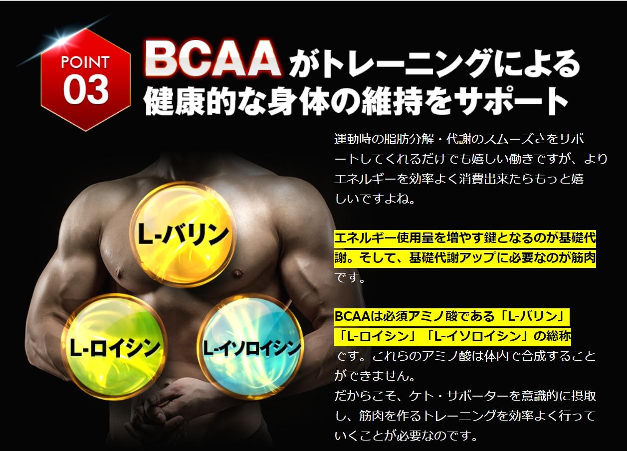 BCAA配合で筋肉の維持・増強サポート効果&基礎代謝アップ効果