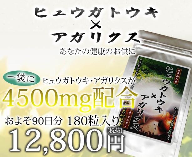 ヒュウガトウキ×アガリクス 特別キャンペーン情報